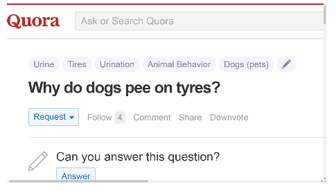 Why do dogs pee on tyres?