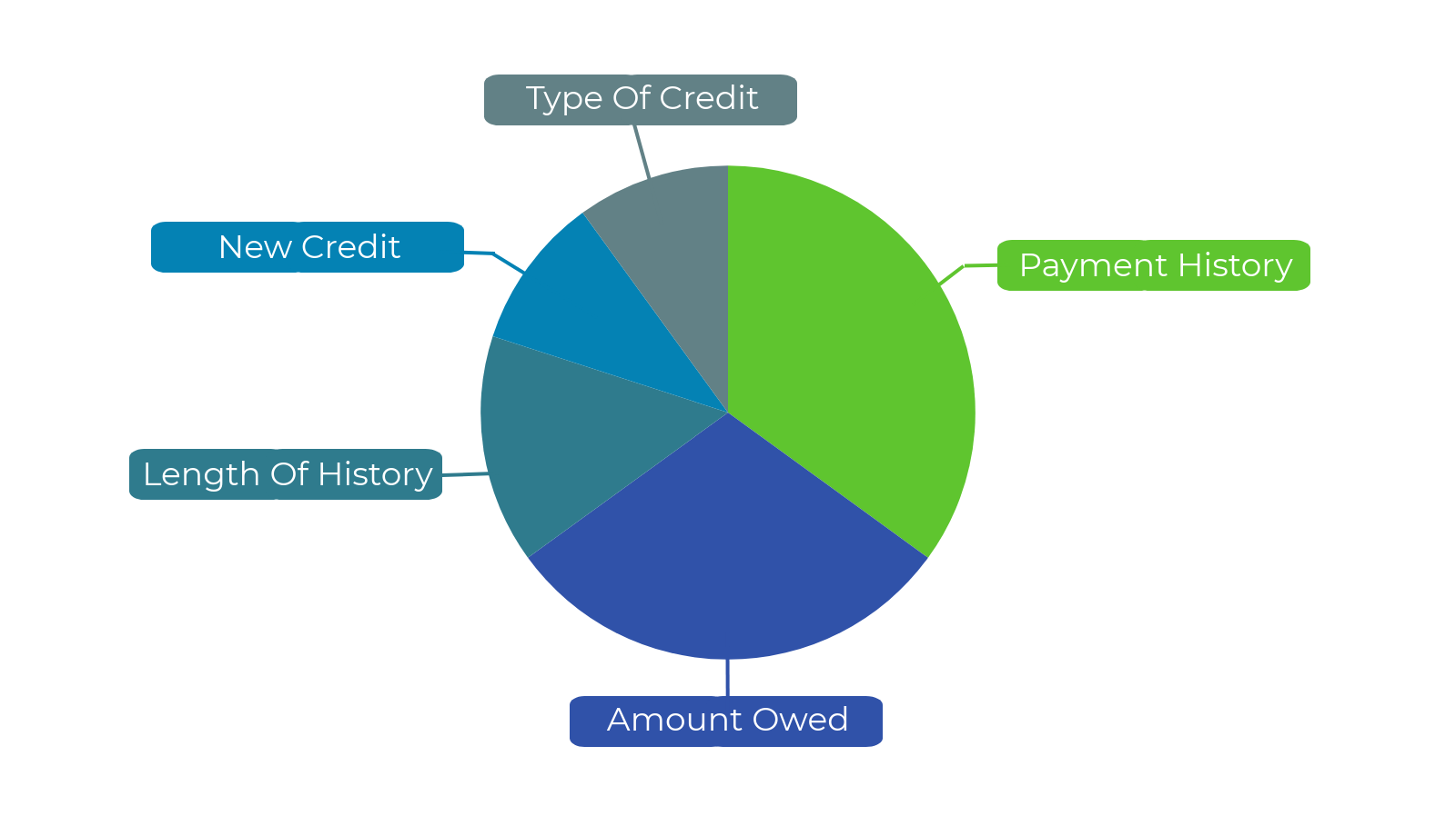 Credit report factors in Canada shown in graph